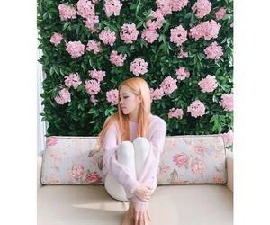 rose, blackpink, and korean image