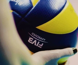 volleyball and volley image