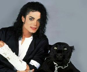 michael jackson, king of pop, and michael image