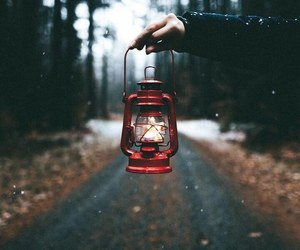 light, photography, and autumn image