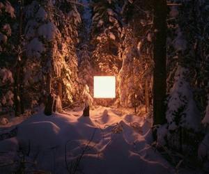 fire, forest, and winter image