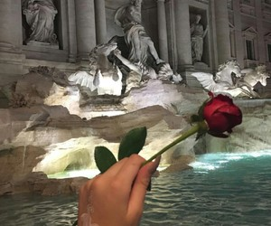 rose, flowers, and italy image