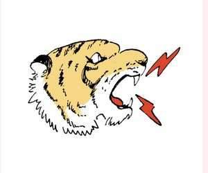 tiger, 素材, and 背景透過 image