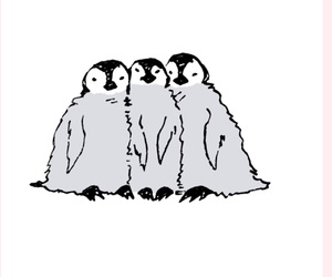 penguin, 素材, and 加工 image