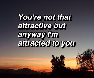 attractive, love quotes, and crush image