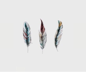 feather image