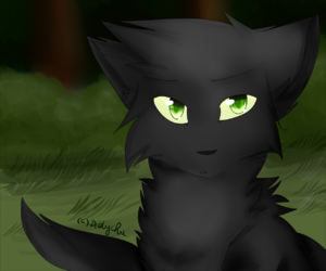 chat, warrior cats, and lgdc image