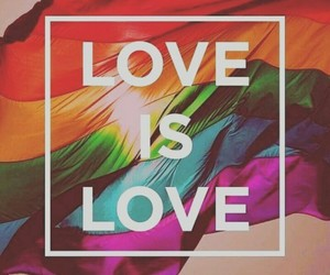 gay, love is love, and lesbian image