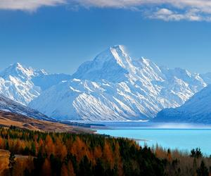 west coast holidays, holidays to new zealand, and family tour packages image
