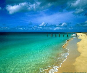 nature, photography, and beach image