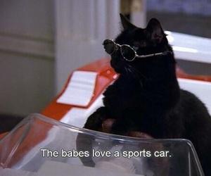 cat, salem, and 90s image
