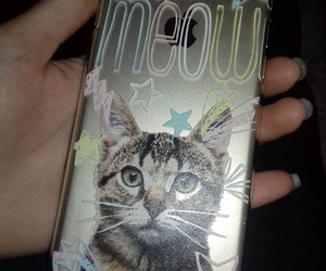 case, cat, and cats image