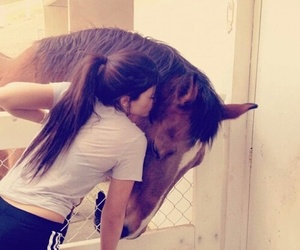 horse and kylie jenner image