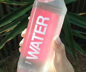 bottle, pink, and fitness image