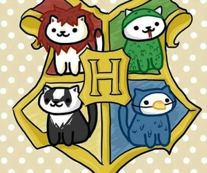 harry potter, hufflepuff, and ravenclaw image