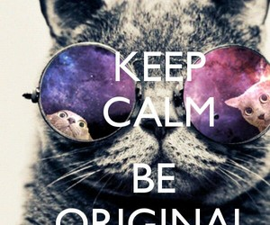cat, original, and keep calm image
