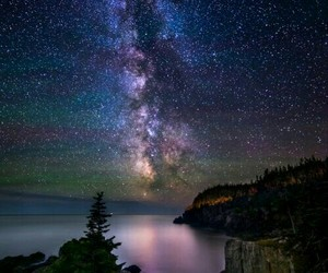 beauty, trees, and stars image