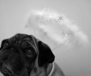 angel, baby, and christmas image