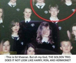 harry_potter and ed_sheeran image