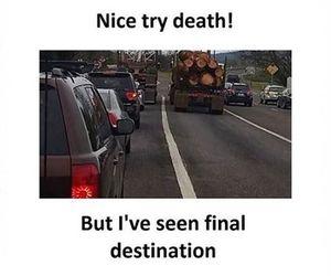 fun, funny, and humor image