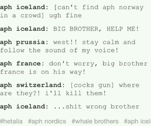 france, iceland, and funny image