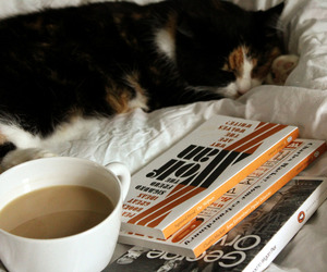 books, cat, and sweet image