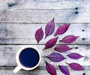 coffee, grey, and leafs image