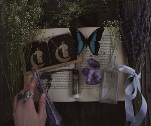 book, bottle, and butterfly image