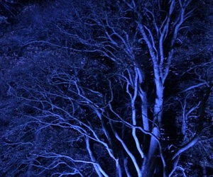 art, lights, and trees image