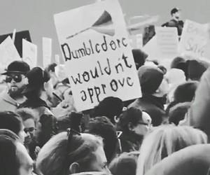 dumbledore, feminism, and feminist image