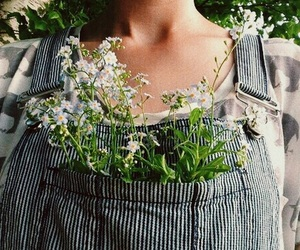 flowers, grunge, and plants image