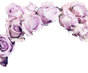 flower crown, overlay, and transparent image