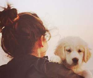dog, friend, and love image