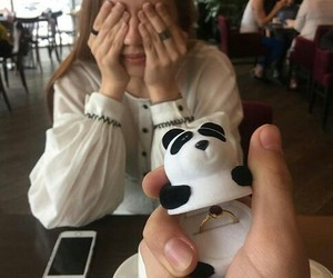 couples, panda, and propose image