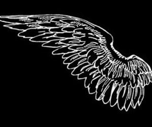 angel