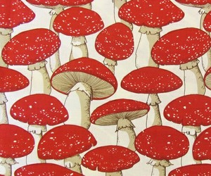 mushroom and red image