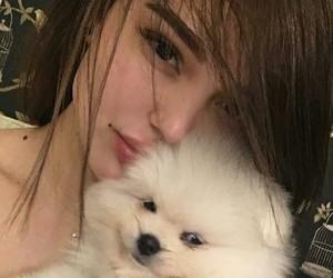 dog, girl, and natural image