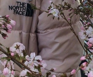pink, the north face, and aesthetic image