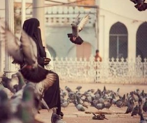 islam, birds, and niqab image