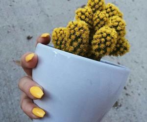 yellow, instagram, and aesthetic image