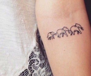 tattoo, elephant, and arm image