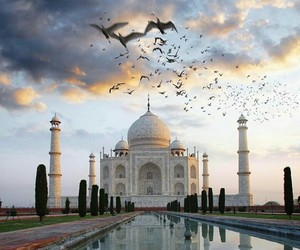 india, travel, and adventure image