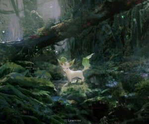 forest, pokemon, and leafeon image