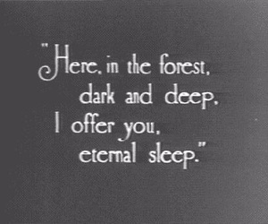 forest, dark, and quotes image