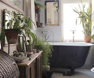 bathroom, plants, and home image