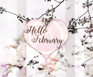 february, pink, and flowers image