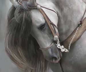aesthetic, horse, and love image
