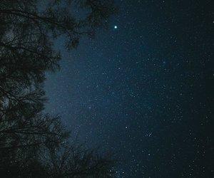 night, stars, and trees image