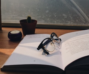 book, cactus, and glasses image