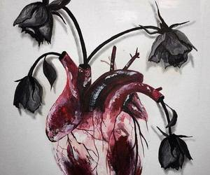 heart, art, and rose image